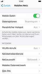Apple iPhone SE - iOS 14 - Internet und Datenroaming - Deaktivieren von Datenroaming - Schritt 4