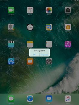 Apple ipad-pro-12-9-inch-met-ios10-model-a1652 - Internet - Handmatig instellen - Stap 15