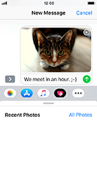 Apple iPhone 5s - iOS 12 - MMS - Sending pictures - Step 12