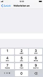 Apple iPhone SE - iOS 12 - Anrufe - Rufumleitungen setzen und löschen - Schritt 7