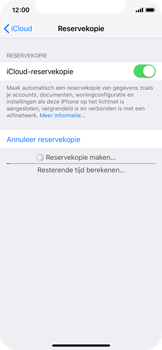 Apple iPhone XS - Data - maak een back-up met je account - Stap 13
