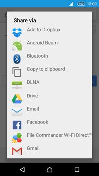 Sony Xperia Z5 Premium (E6853) - Internet - Internet browsing - Step 18