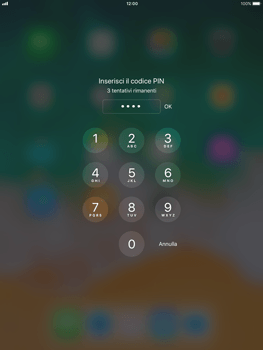 Apple iPad Air iOS 11 - Internet e roaming dati - Configurazione manuale - Fase 16