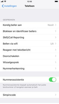 Apple iPhone 6s Plus - iOS 12 - Bellen - bellen via wifi (VoWifi) - Stap 4