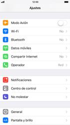 Apple iPhone 6s - iOS 11 - Internet - Activar o desactivar la conexión de datos - Paso 3