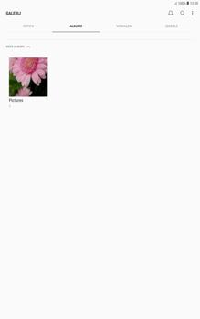 Samsung galaxy-tab-a-10-1-android-oreo - Contacten en data - Foto