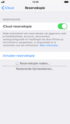 Apple iPhone 7 - iOS 12 - toestel resetten - back-up maken met jouw account - stap 15