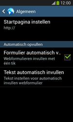 Samsung G3500 Galaxy Core Plus - Internet - handmatig instellen - Stap 25