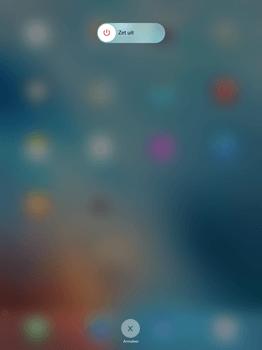 Apple iPad Pro - Internet - Handmatig instellen - Stap 9