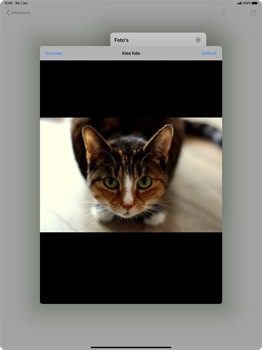 Apple iPad Pro 12.9 inch 4th generation (2020) (Model A2232) - E-mail - Hoe te versturen - Stap 13