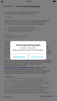 Apple iPhone 6 Plus - iOS 11 - Persönliche Einstellungen von einem alten iPhone übertragen - 19 / 31