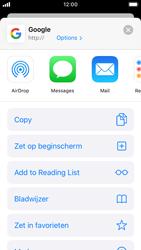 Apple iPhone SE - iOS 13 - Internet - Internetten - Stap 5