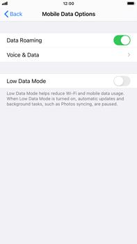 Apple iPhone 6s Plus - iOS 14 - Internet and data roaming - Disabling data roaming - Step 5