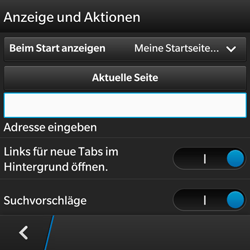 BlackBerry Q5 - Internet - Apn-Einstellungen - 19 / 22