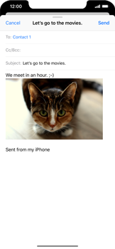 Apple iPhone XR - Email - Sending an email message - Step 14