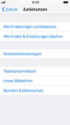 Apple iPhone SE - Fehlerbehebung - Handy zurücksetzen - 7 / 11