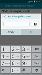 Samsung A500FU Galaxy A5 - Messagerie vocale - configuration manuelle - Étape 10