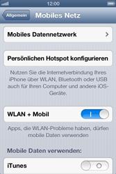 Apple iPhone 3GS - Internet und Datenroaming - Manuelle Konfiguration - Schritt 6