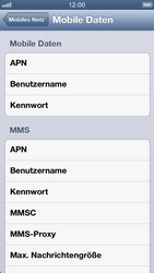 Apple iPhone 5 - Internet und Datenroaming - Manuelle Konfiguration - Schritt 7