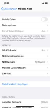 Apple iPhone 11 Pro - iOS 14 - Internet und Datenroaming - Prüfen, ob Datenkonnektivität aktiviert ist - Schritt 4