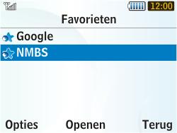 Samsung S3350 Chat 335 - Internet - internetten - Stap 11