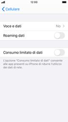 Apple iPhone SE - iOS 13 - Rete - Come attivare la connessione di rete 4G - Fase 5