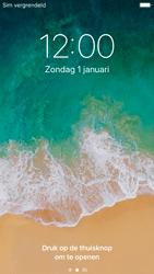Apple iPhone 6s - iOS 11 - Internet - handmatig instellen - Stap 15