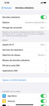 Apple iPhone 11 Pro Max - Internet et roaming de données - Comment vérifier que la connexion des données est activée - Étape 5
