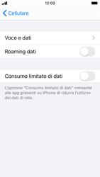 Apple iPhone SE - iOS 13 - Internet e roaming dati - Disattivazione del roaming dati - Fase 6