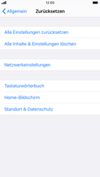 Apple iPhone SE (2020) - iOS 14 - Gerät - Zurücksetzen auf die Werkseinstellungen - Schritt 5