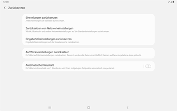 Samsung Galaxy Tab S7 - Gerät - Zurücksetzen auf die Werkseinstellungen - Schritt 6