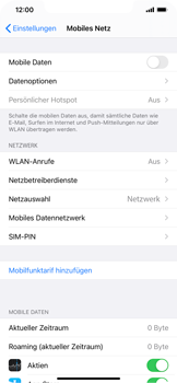 Apple iPhone XR - iOS 14 - Internet und Datenroaming - Prüfen, ob Datenkonnektivität aktiviert ist - Schritt 4