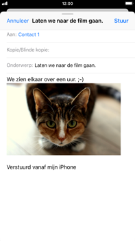Apple iPhone 6 Plus - iOS 12 - E-mail - Bericht met attachment versturen - Stap 14