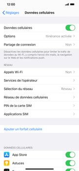Apple iPhone XS Max - iOS 13 - Réseau - Utilisation à l