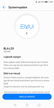 Huawei Mate 10 Pro Dual-SIM (Model BLA-L29) - Software updaten - Update installeren - Stap 6