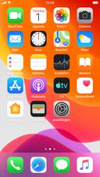Apple iphone-se-met-ios-13-model-a1723 - Instellingen aanpassen - Nieuw toestel instellen - Stap 36