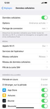 Apple iPhone XS Max - Internet et roaming de données - Désactivation du roaming de données - Étape 4