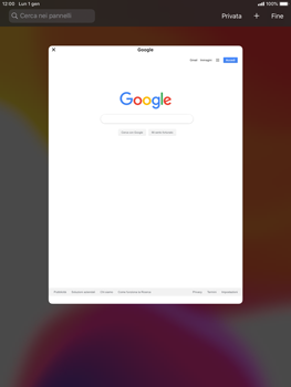 Apple iPad Mini 4 - ipados 13 - Internet e roaming dati - Uso di Internet - Fase 15