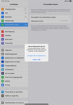 Apple iPad Pro 11 inch 2nd generation (2020) (Model A2230) - WiFi - Mobiele hotspot instellen - Stap 7