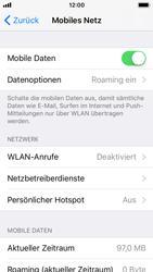 Apple iPhone 5s - iOS 11 - Internet und Datenroaming - Deaktivieren von Datenroaming - Schritt 4