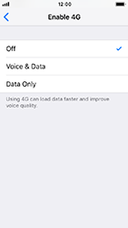 Apple iPhone 5s - iOS 12 - Network - Enable 4G/LTE - Step 6