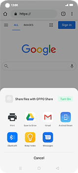 Oppo Find X2 Neo - Internet and data roaming - Using the Internet - Step 22