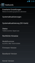 Alcatel One Touch Idol - Software - Installieren von Software-Updates - Schritt 5