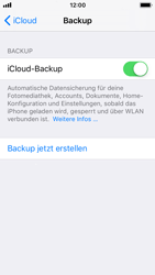 Apple iPhone SE - Software - iCloud synchronisieren - 9 / 10