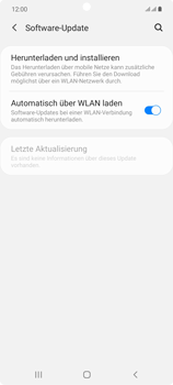 Samsung Galaxy Note 20 5G - Software - Installieren von Software-Updates - Schritt 5
