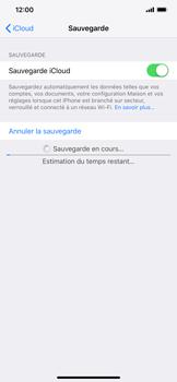Apple iPhone XR - Données - créer une sauvegarde avec votre compte - Étape 13