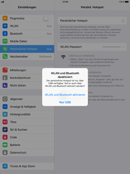 Apple iPad Air - Internet - Mobilen WLAN-Hotspot einrichten - 8 / 9