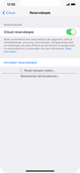 Apple iPhone XR - Data - maak een back-up met je account - Stap 13