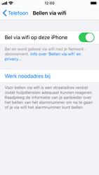 Apple iphone-se-met-ios-13-model-a1723 - Bellen - WiFi Bellen (VoWiFi) - Stap 7