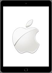 Apple iPad 9.7 (Model A1823)
